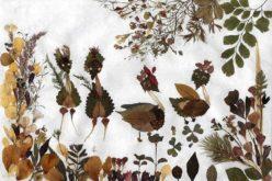 Botanika darslarida ishlatiladigan gerbariylarning ahamiyati va ularning tayyorlanishi